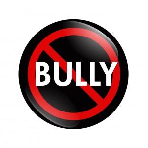 Bully12-300x300